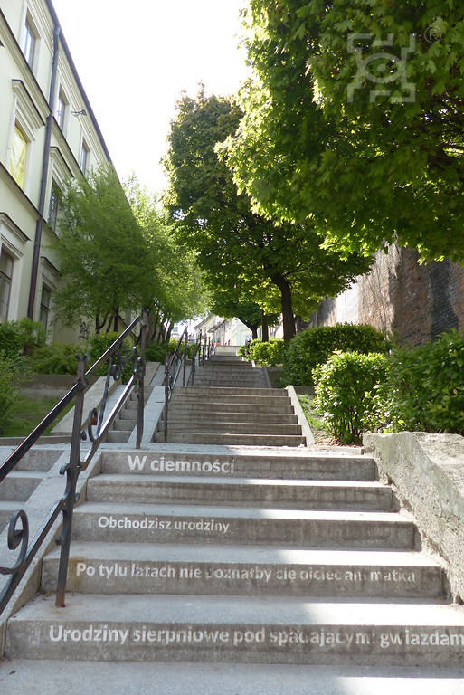 city of Lublin green budget stairs