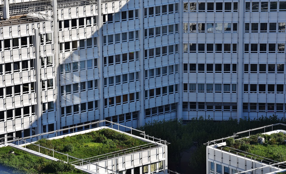 Hamburg with a long list of ambitious green roof projects