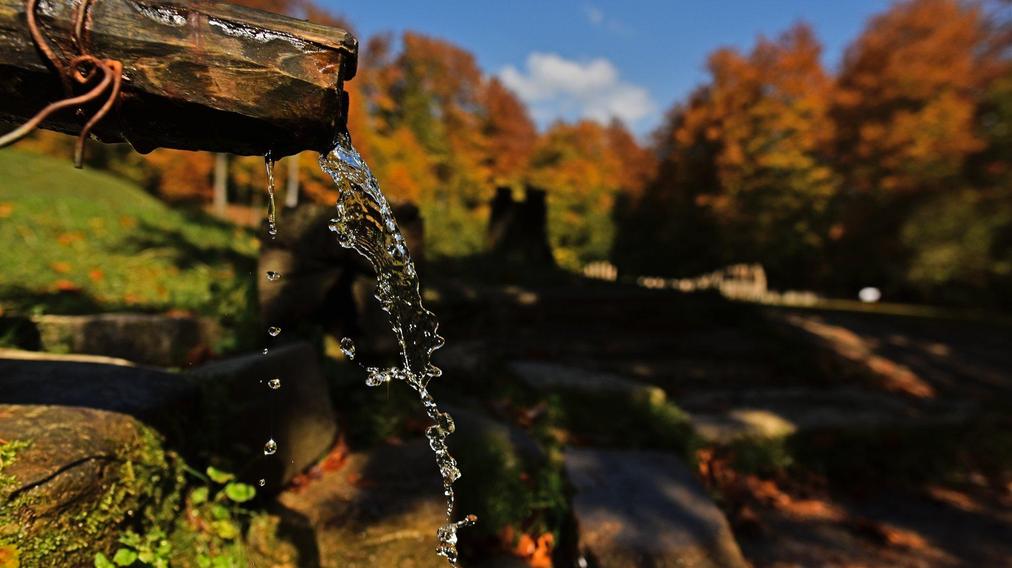 Come and discover the autumn show at Sarmizegetusa Regia