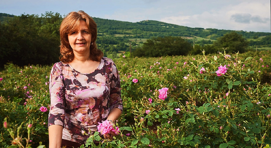 Bulgarian rose oil receives EU support