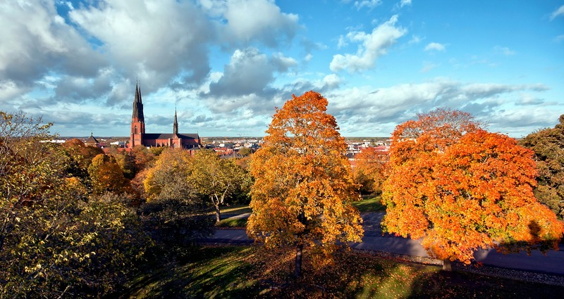 Erik Pelling: Uppsala's goal is to be fossil free by 2030 and climate positive by 2050