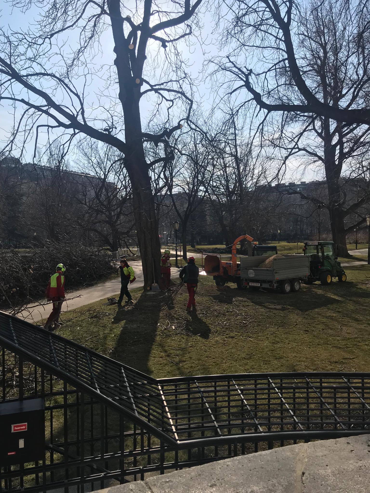 See how the City of Vienna takes care of its parks