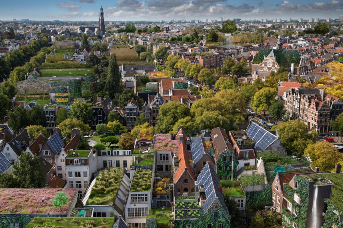 Rooftop revolution pr