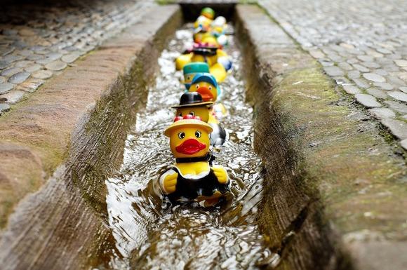 Slider rubber duck 1401225 1280