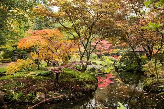 Slider japanese garden the hague