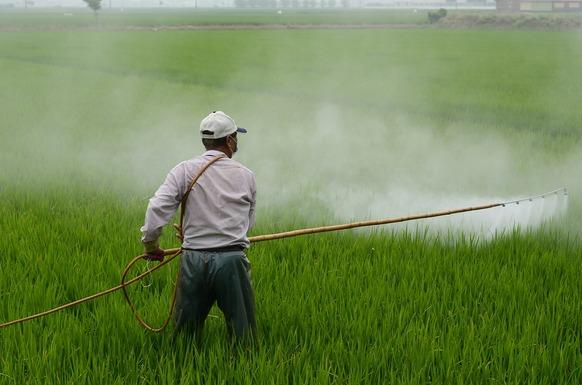 Slider herbicide 587589 1280