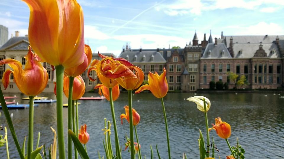 Binnenhof 2398654 960 720
