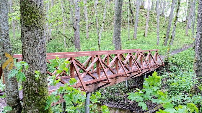 Slider alytus botanical reserve new bridge