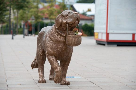 Slider kaunas st.bernard sculpture