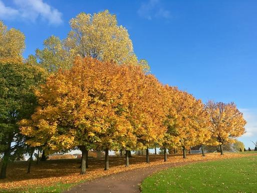 Slider autumn 1300904 1280