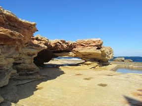 Biggest thumb the nature of marsaskala