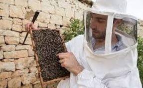 Biggest thumb bee keeper