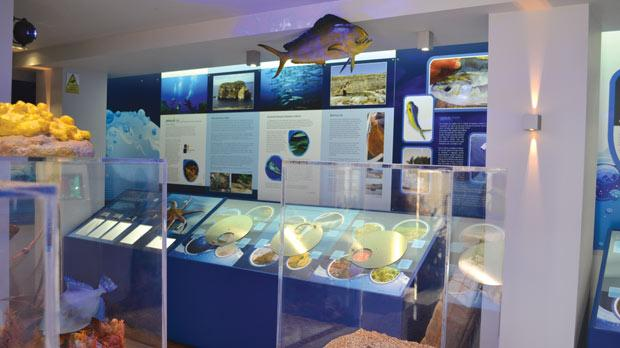 Dwejra marine environmental education centre 1