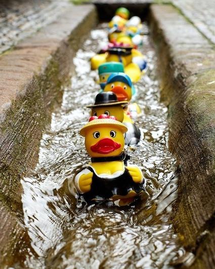 Rubber duck 1401225 1280