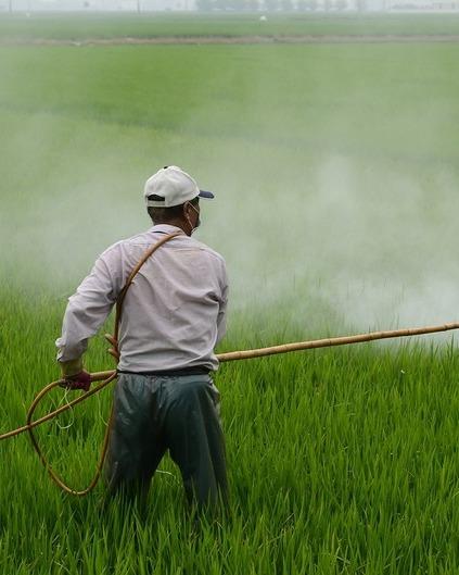 Herbicide 587589 1280