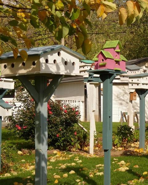 Birdhouse 2147829 1920