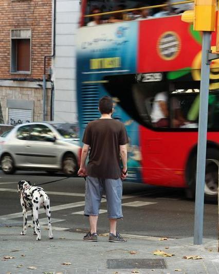 Barcelona bus