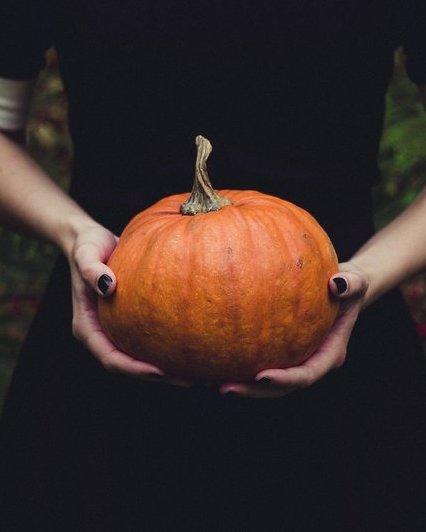 Pumpkin 1838545 1920