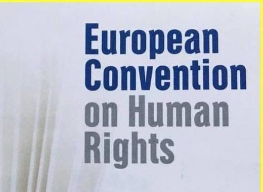 Medium europe s human rights watchdog
