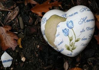 Thumb heart 480367 1920
