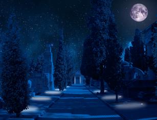 Thumb cementerio civil imagen nocturna