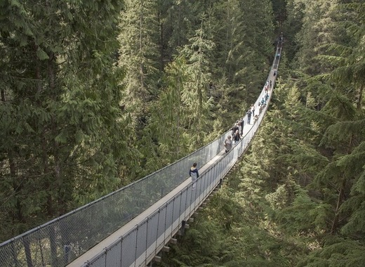 Medium capilano suspension bridge 1393076 1280