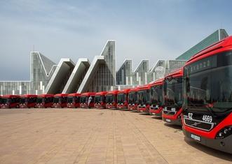 Thumb buses2