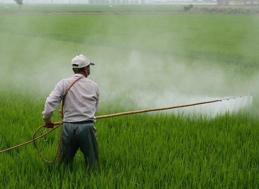 Medium herbicide 587589 1280