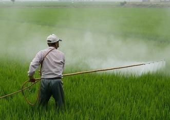 Thumb herbicide 587589 1280