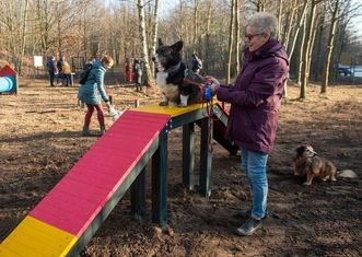 Thumb dog park in lodz    pawe%c5%82 %c5%81acheta
