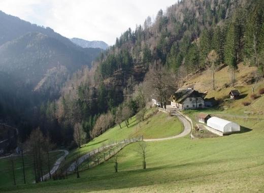 Medium slovenia regions   back to the past