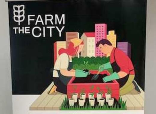Medium farm the city 3
