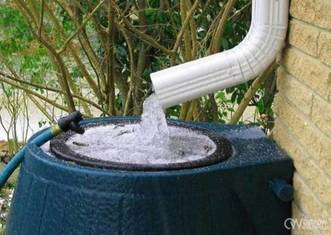 Thumb rainwater catcher
