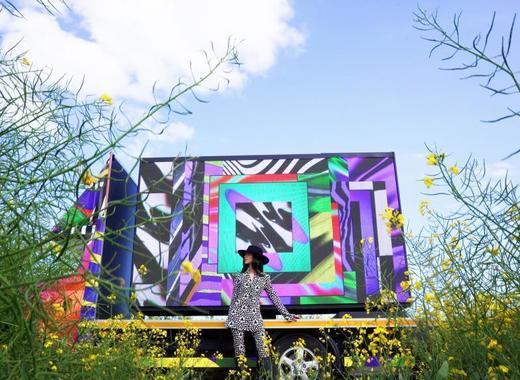 Medium fingal   art installation