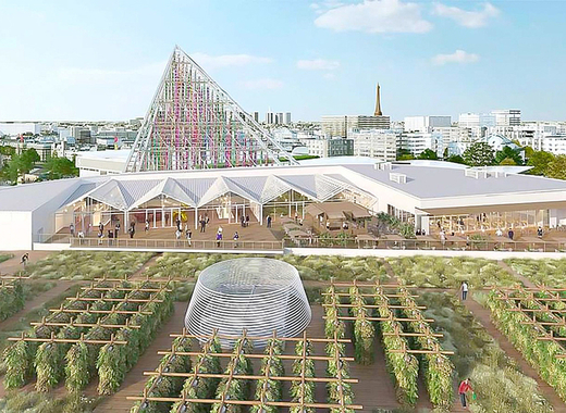 Medium largest rooftop urban farm in paris   project