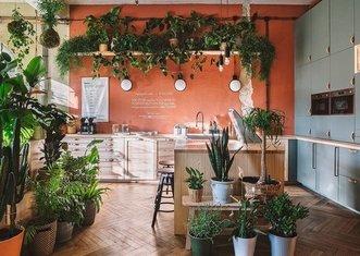 Thumb sustainable home   ikea polska