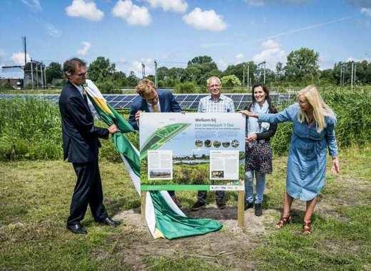 Medium the hague solar park