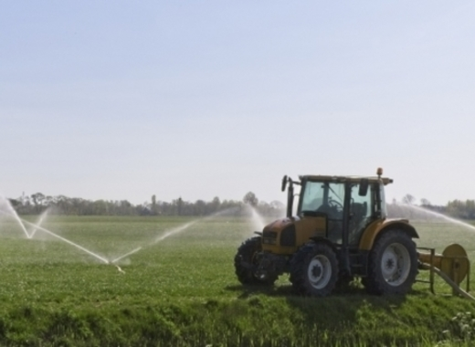 Medium irrigation
