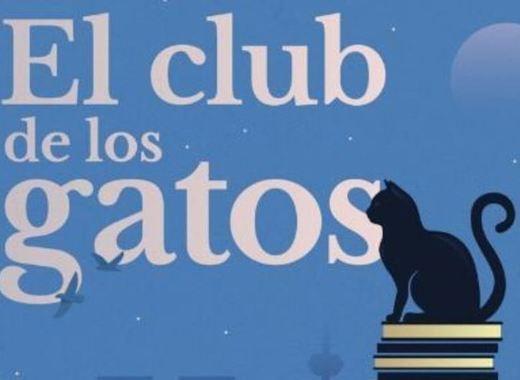 Medium el club de los gatos