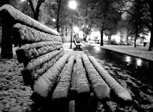 Medium winter 610615 1920