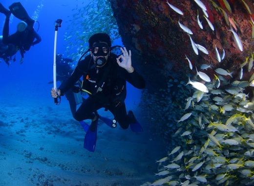 Medium dive 1849534 960 720