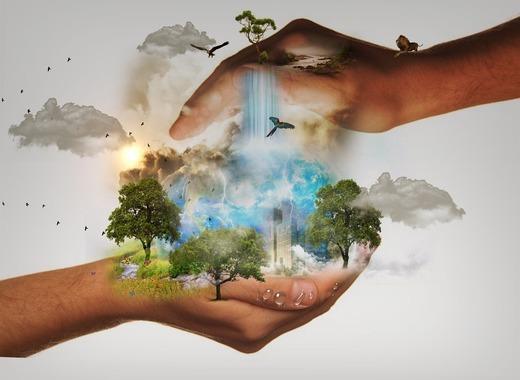 Medium nature conservation 480985 960 720