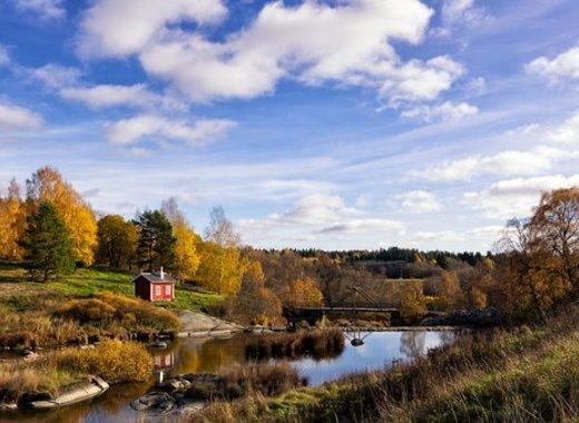 Medium finland