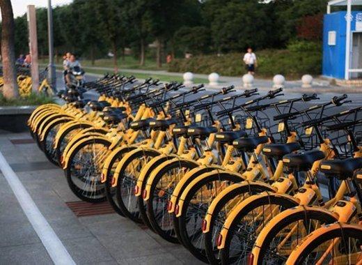 Medium bikes