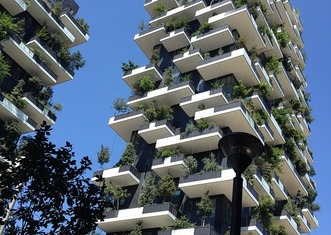 Thumb vertical forest 1791368 960 720