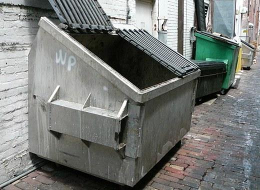 Medium dumpster