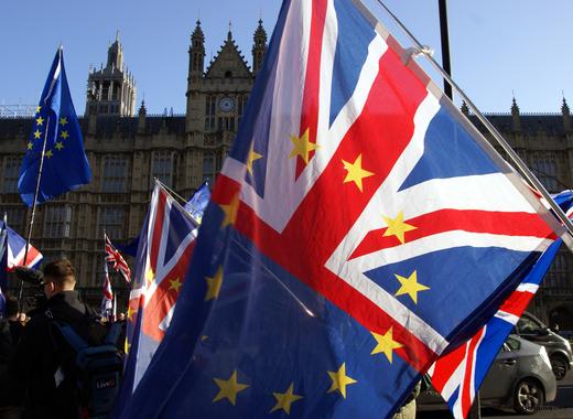 Medium brexit demonstration flags