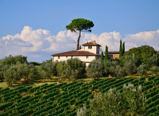 Medium tuscany 851197  340