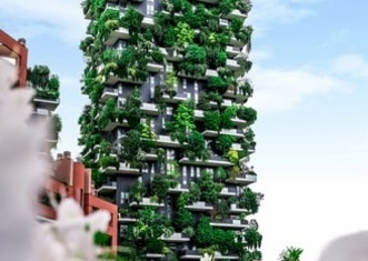 Thumb verticalforest