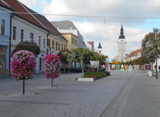 Medium slovakia   trnava   pesia zona rb04